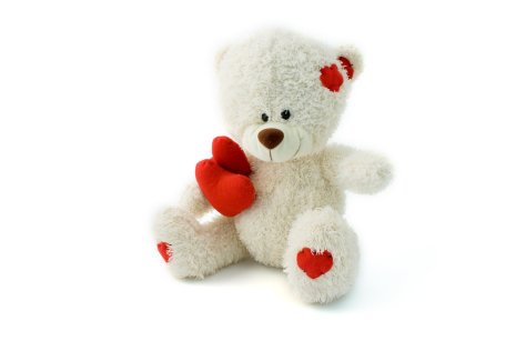 white_teddy_bear_183851.jpg